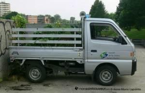 Camionnette_petite