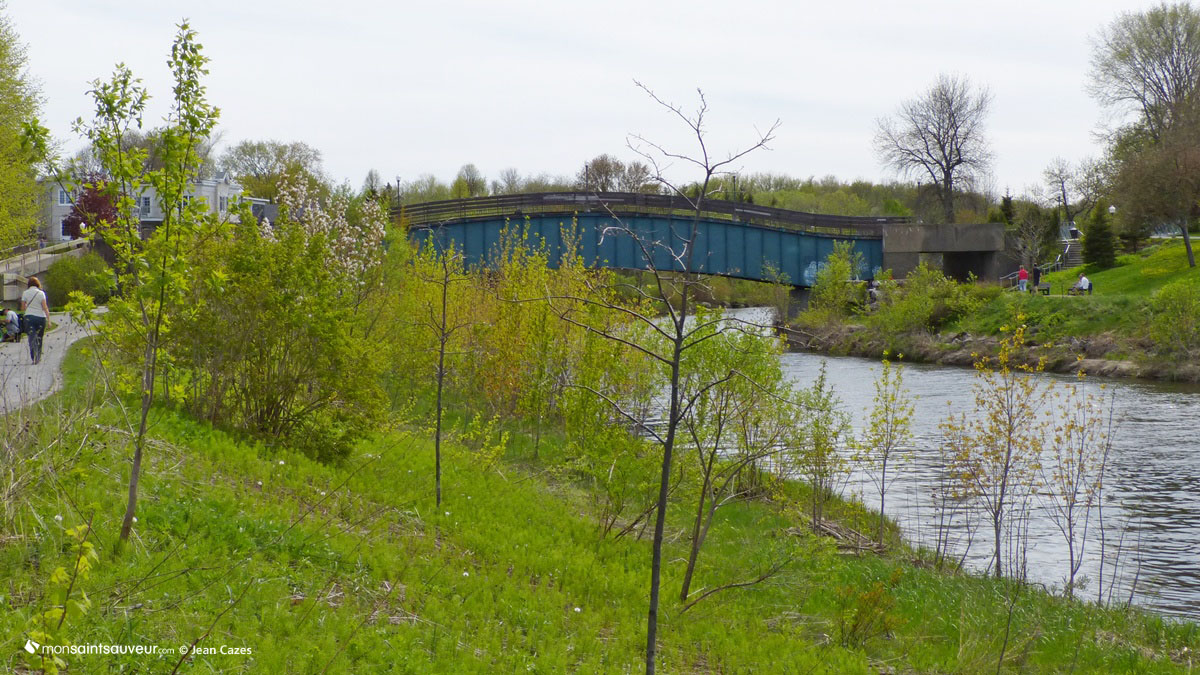 Rivière Saint-Charles