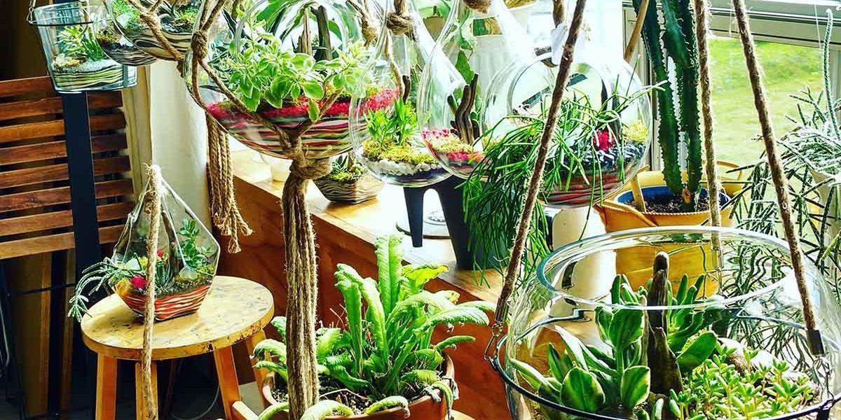 Vitrum Hortis : des jardins de verre pour égayer votre maison | 23 novembre 2017 | Article par Céline Fabriès
