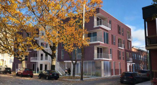Dorimène: une nouvelle coopérative d'habitation veut pousser - Véronique Demers