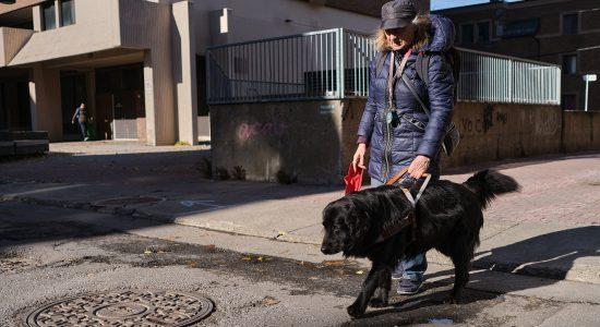 Étude : Rendre la ville plus inclusive pour les aînés - Julie Rheaume