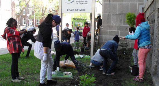 L'école Saint-Malo et la Mosquée de la Capitale verdissent ensemble - Suzie Genest