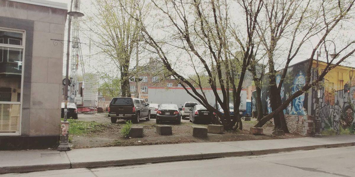 L'érable à Giguère : prendre racine dans le quartier | 20 juin 2017 | Article par Myriam Nickner-Hudon