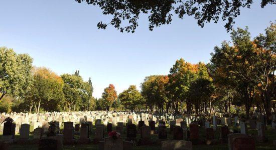 Parler avec les pierres tombales du Cimetière Saint-Charles - Vincent Auclair
