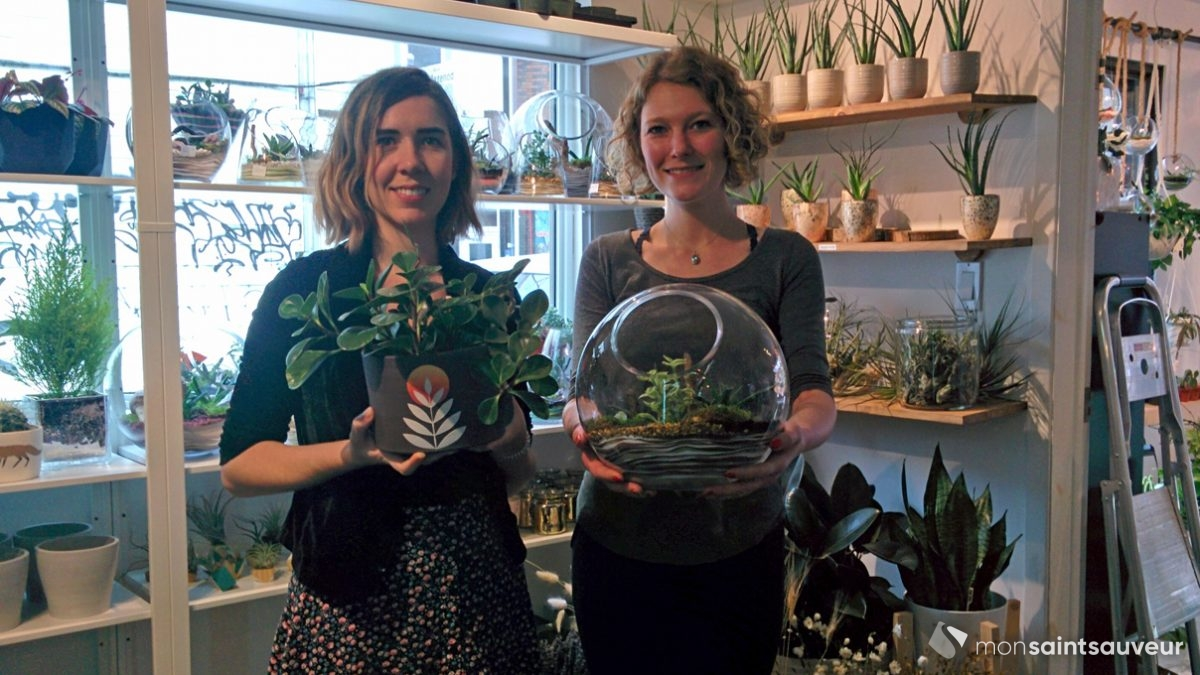 Les Jardins Vitrum Hortis étendent leurs racines | 28 novembre 2018 | Article par Suzie Genest