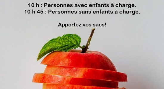 Aide alimentaire mensuelle