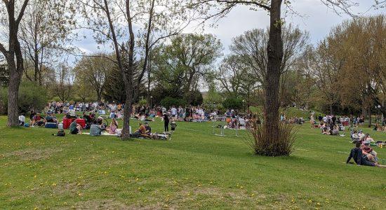 Heures de consommation d'alcool réduites dans les parcs conviviaux - Julie Rheaume