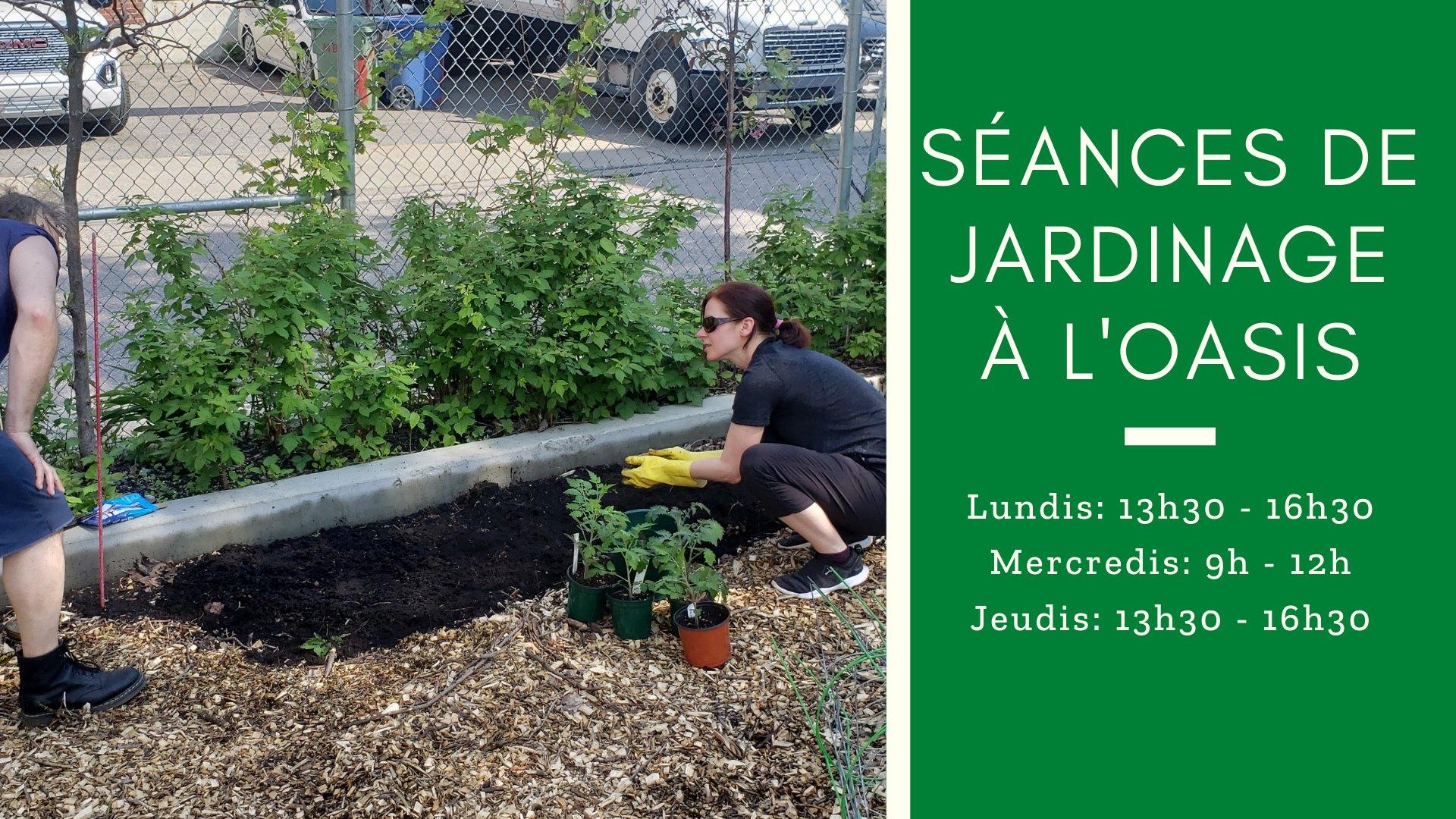 Jardinage à l'Oasis urbaine du CJC